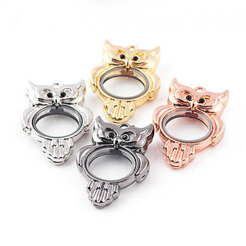 Living Memory Locket Crystal Owl Necklace Floating Charm Pendant Charms HU