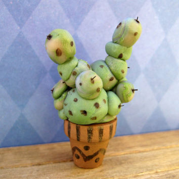 Magical Mimbulus Mimbletonia Plant from Harry Potter in dollhouse miniature by LittleWooStudio