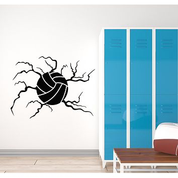Vinyl Wall Decal Beach Volleyball Ball Sport Game Stickers Mural (g598)