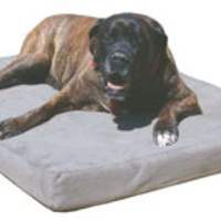Memory Foam Dog Beds--Large