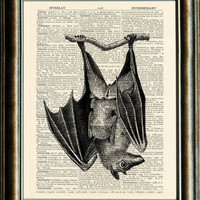 Vintage Bat Illustration  vintage image printed by PixelArtPrints