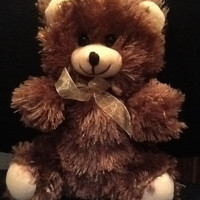 "10"" Heated or Cold Teddy Bear"