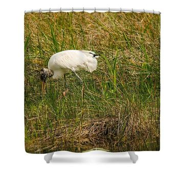 Wood Stork - Shower Curtain