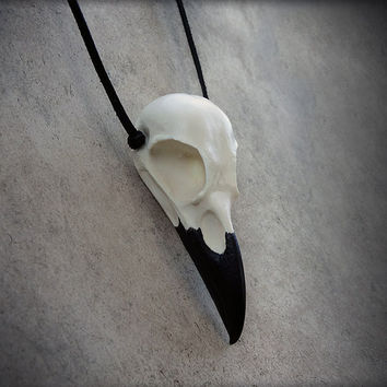 Raven Skull - Cast Bone Resin Replica (Black Beak) Necklace with Suede Cord - Taxidermy Crow Poe Goth Bird Skull