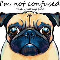 Confused Pug Art Print by Cartoon Your Memories