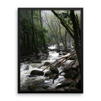 Foggy Mountain Forest - Framed Photo Print