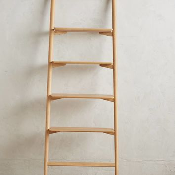 Musetta Leaning Bookcase