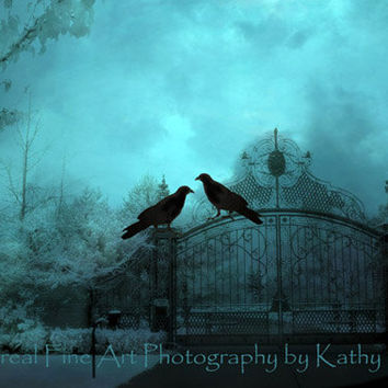 "Gothic Raven Photograph, Surreal Raven Crows Photography, Ravens on Gate, Haunting Eerie Spooky Art, Aqua Teal Fine Art Photograph 8"" x 12"""