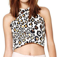 Leopard Print Sleeveless Crop Top