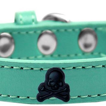 Skull Widget Dog Collar Aqua Size 14