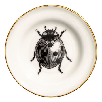 Small printed porcelain plate - White/Ladybird - Home All | H&M GB