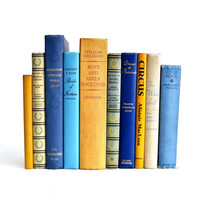 Blue and Yellow Vintage Book Collection