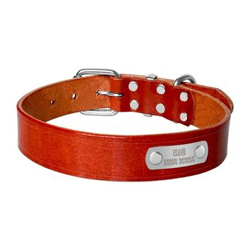 Leather Dog Collar with  Customized Engraved Name Badge