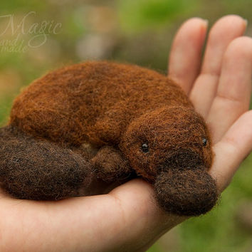 Felted platypus, felt animal, needle felted toy, soft, gift, exotic, Australia, wool creature, soft sculpture, sleeping