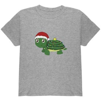 DCCKJY1 Christmas Turtle Lights Santa Hat Youth T Shirt