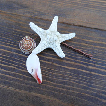 Starfish Hair Accessory - Handmade Nautical Design - Bobby Pin Accessory - Beach Accessory - Scallop Seashell and Strawberry Shell