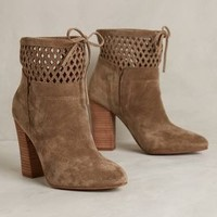 Diamond Day Booties by Sigerson Morrison