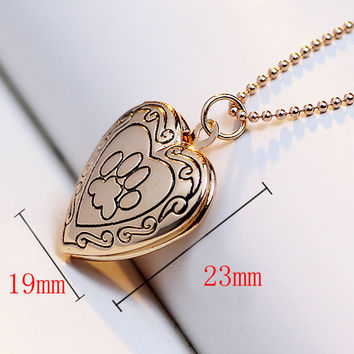 2016 New Arrival Valentines Gift Pet Dog Paw Charm Pendant Box Photo Locket Necklace Heart Shape Jewelry