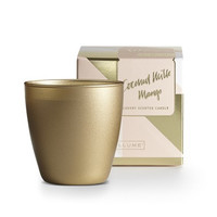 Coconut Milk Mango Demi Boxed Glass Candle