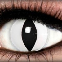 White Cat Theatrical Contact Lens by ExtremeSFX