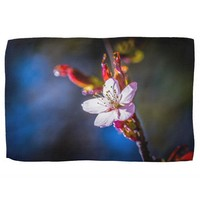 Sakura - Japanese cherry flower Kitchen Towels