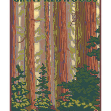 Pfeiffer Big Sur State Park, California - Giant Redwoods Poster at AllPosters.com