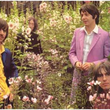 The Beatles Flower Field Poster 11x17