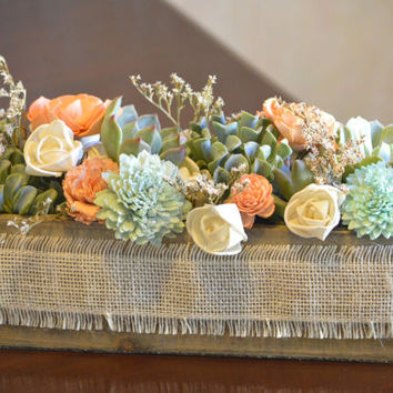 Live Succulent and Sola Flower Centerpiece or Gift Coral Peach Mint Green Ivory