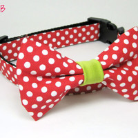Red Polka Dot Dog Collar and bow tie set ( X-Small,Small Size)- Adjustable