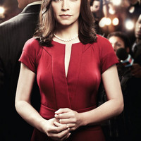 The Good Wife Julianna Marguiles TV Show Poster 11x17