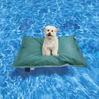 Pet Kai Pool Float
