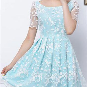Sky Blue Dress with Embroidered White Organza Overlay from RobePlus