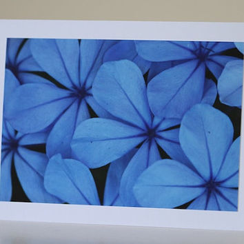 Floral Sympathy Card, Blue Flowers Photography, Condolences, Peace and Tranquility