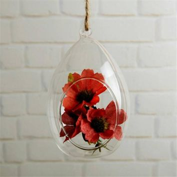 Hanging Glass Vase Ellipse Hanging Terrarium Glass Vase Hydroponic Planter
