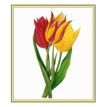 Bouquet of Tulip Flowers Inspired by Pierre-Joseph Redoute Counted Cross Stitch Pattern