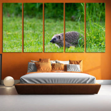 Hedgehog Wall Art Kids Room Wall Art / Animal Photo Print Gift for Home / Wildlife Art Nature Wall Art Photo Canvas Print Playroom Wall Art