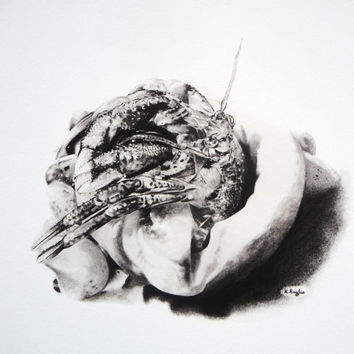 Print of hermit crab, giclee, art, wildlife