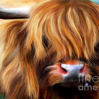 Highland Cow Painting by Michelle Wrighton - Highland Cow Fine Art Prints and Posters for Sale