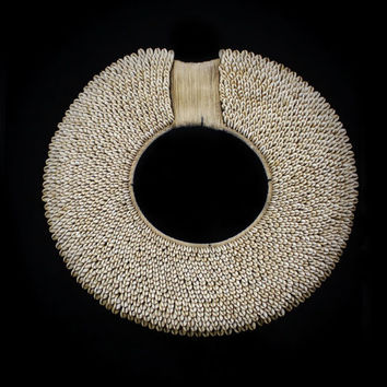 Cowrie Shell Necklace Exceptionally From Borneo Hunters