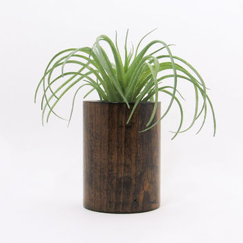 Wood Planter, Succulent Planter, Modern Planter, Air Plant Holder, Indoor Planter, Unique Planter, Rustic Planter, Geometric Planter