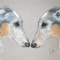 Nose To Nose Borzoi Dog Art Note Cards By Cori Solomon by terikor