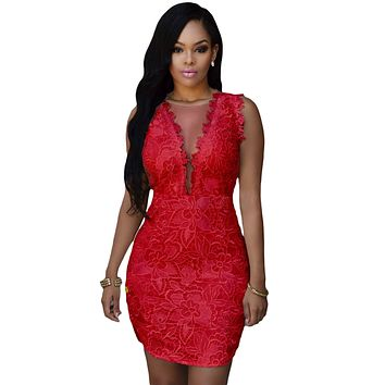 Red Lace Nude Mesh Accent Dress