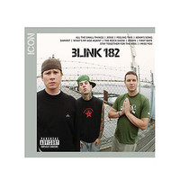 Blink-182 - Icon CD | Hot Topic