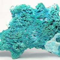 Plancheite Crystals Rare Turquoise Blue Copper Mineral with Chrysocolla Mineral Specimen Connoisseur's Choice