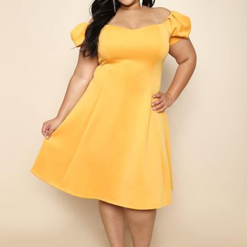 special occasion sweetheart Flare Plus Size A-line Dress