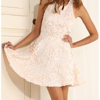 Party dresses > Lace Halter Neck A-Line Dress