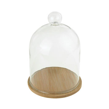 Clear Glass Dome Display with Wooden Base, 6-Inch