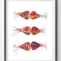 Brain Synapses Watercolor Print Human Brain Neurotransmitters Medical Art Brain Art Neurology Poster Neuronal Receptors Science Art Print