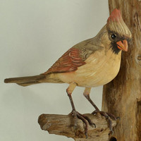 Carved Cardinal Bird on Driftwood Wall Hanging - Female Hand Carved Wood - Vintage Folk Decoy - Hand Painted - Lifelike Artist Signed