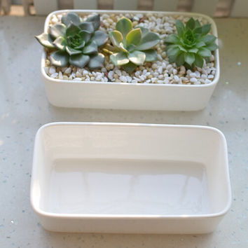 Handmade 1 pcs white Long Bar porcelain planter for succulent/airplant/moss, perfect gift for wedding, your inspiring greenhouse!